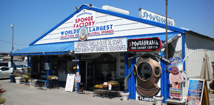 spongeorama